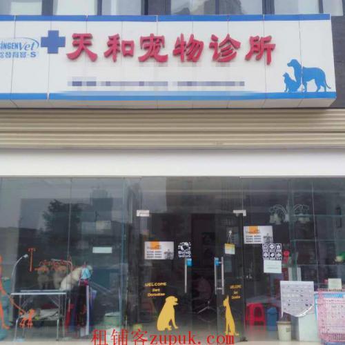 汉阳龙阳村172㎡宠物店整转