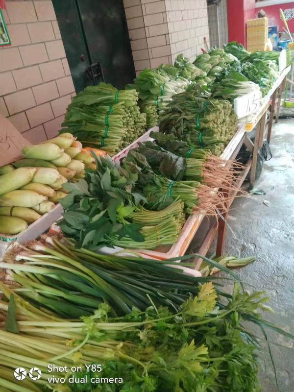 蔬菜,水果,百货