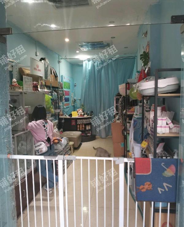 东风西西华路20平米宠物店出租