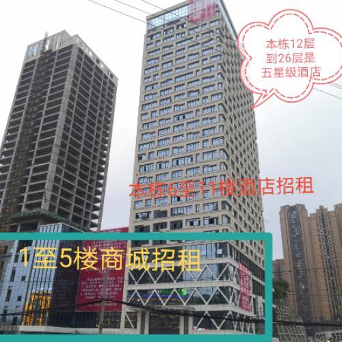 普天广场地铁口大型购物中心火热招商中